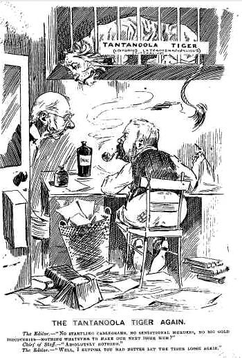 tiger 1896